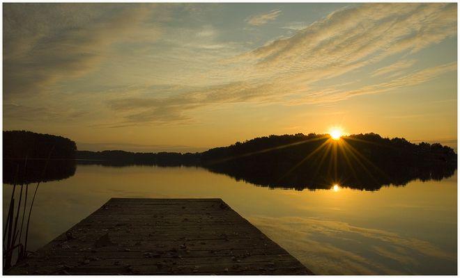 Morgen`s am Dümmer See