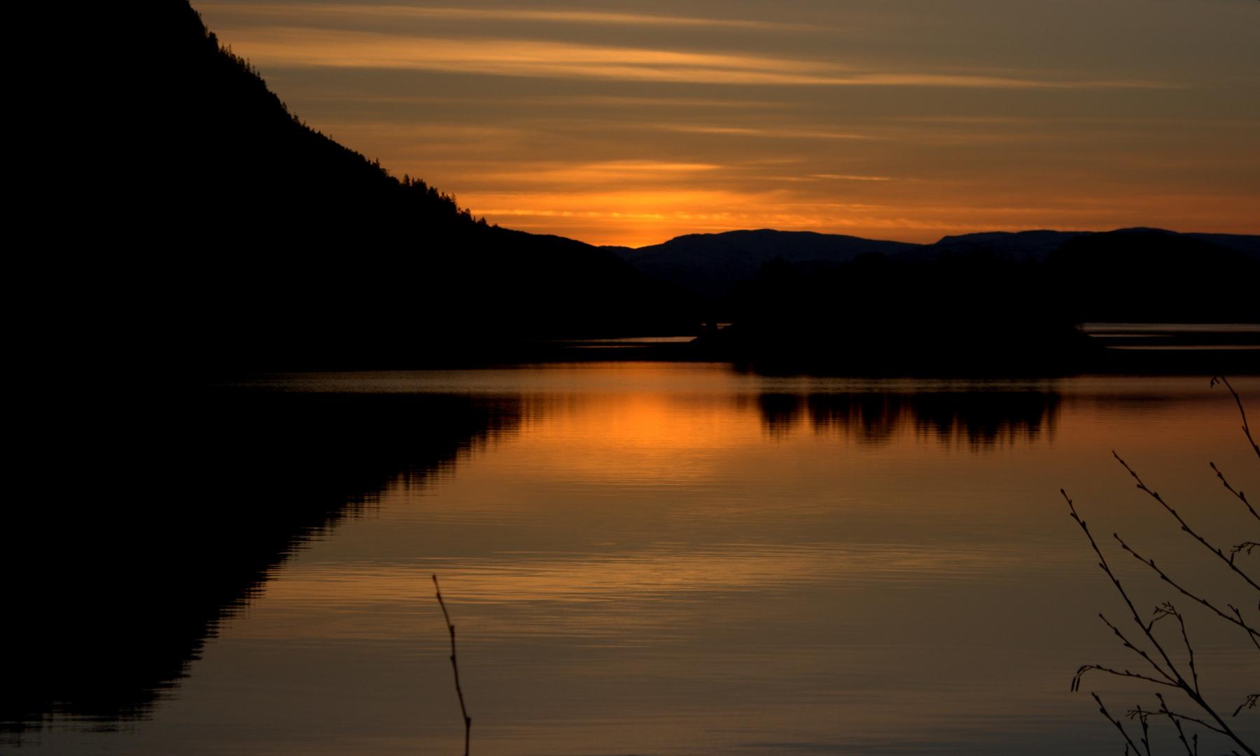 Morgens am Fjord
