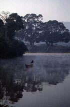 Morgens am Phewa-See