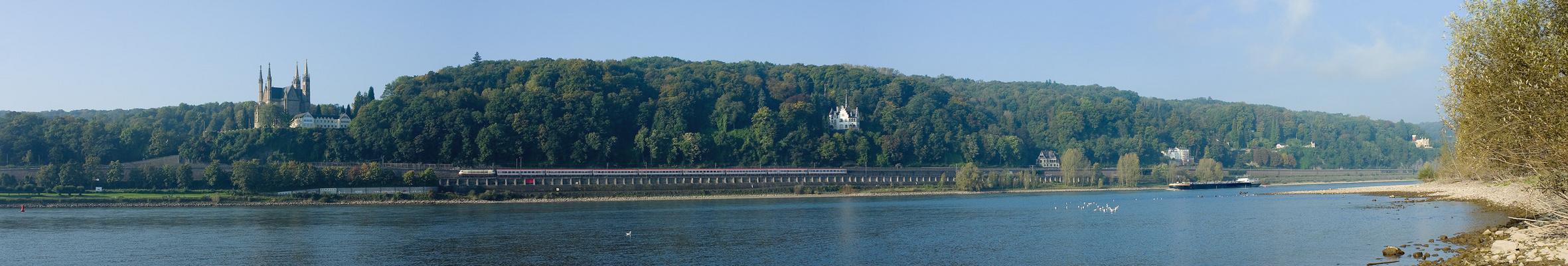 Morgens am Rhein