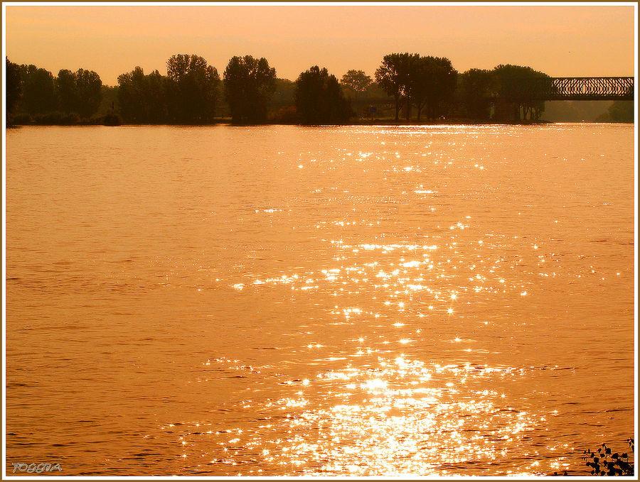 Morgens am Rhein II