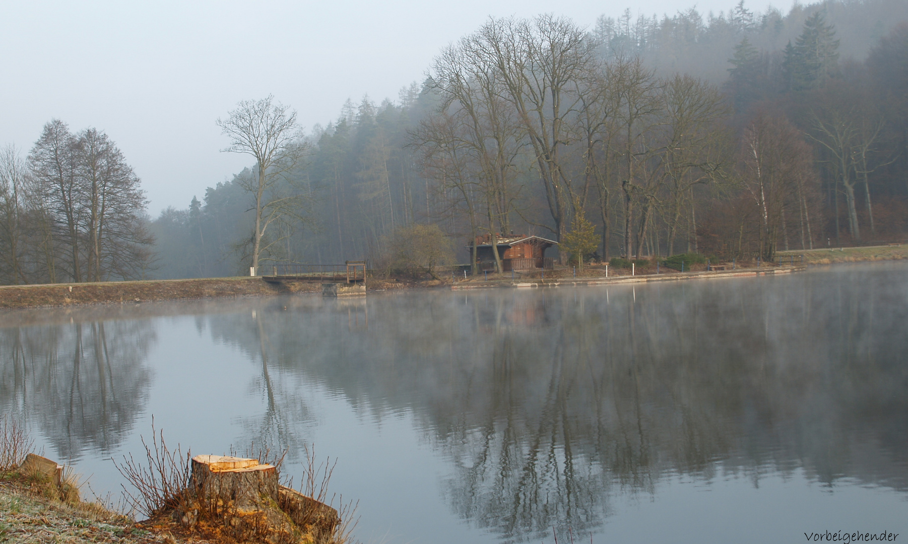 Morgens am See 3