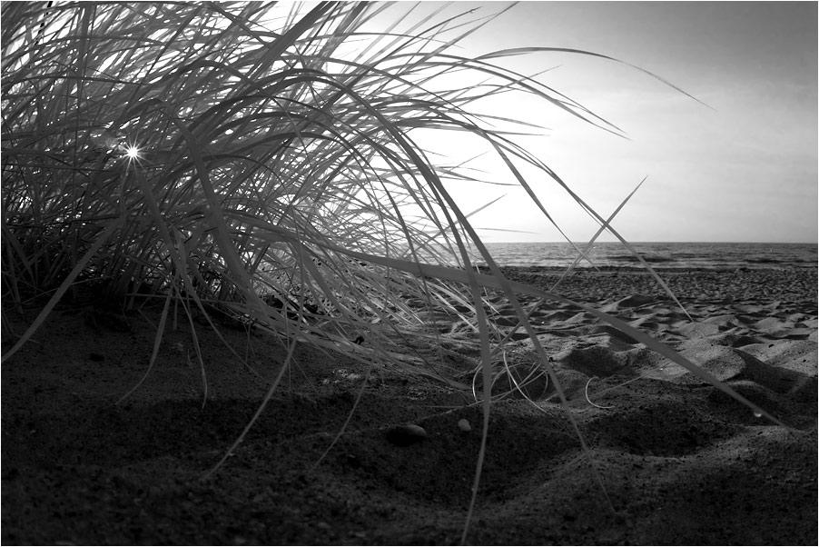Morgens am Strand II