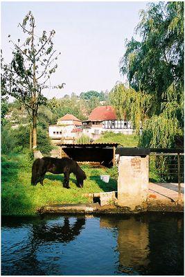 Morgens an der alten Mühle