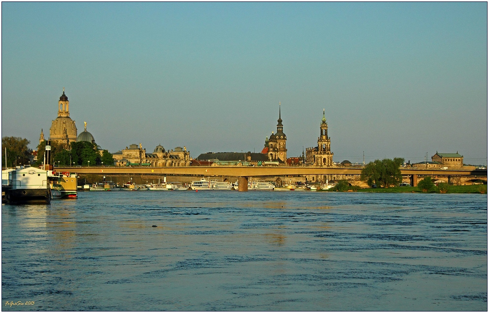 Morgens an der Elbe (7)