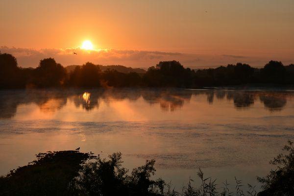 morgens an der Elbe...