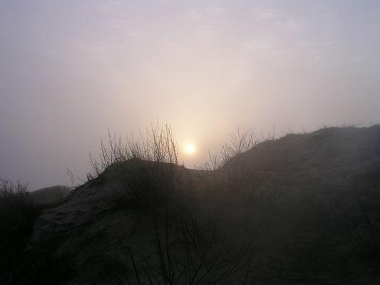 Morgens an der Steilküste