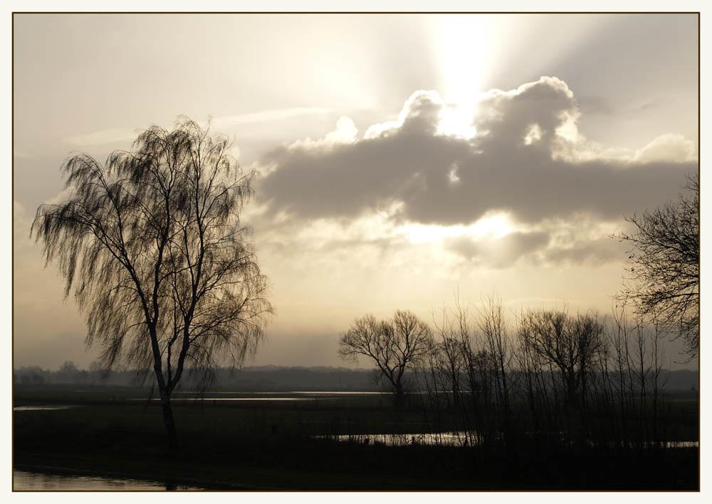 Morgens an der Wümme II
