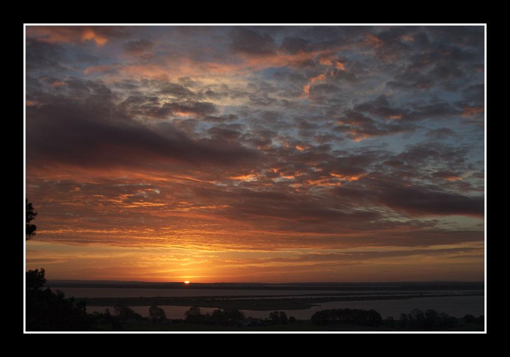 Morgens auf dem Dornbusch von Hiddensee