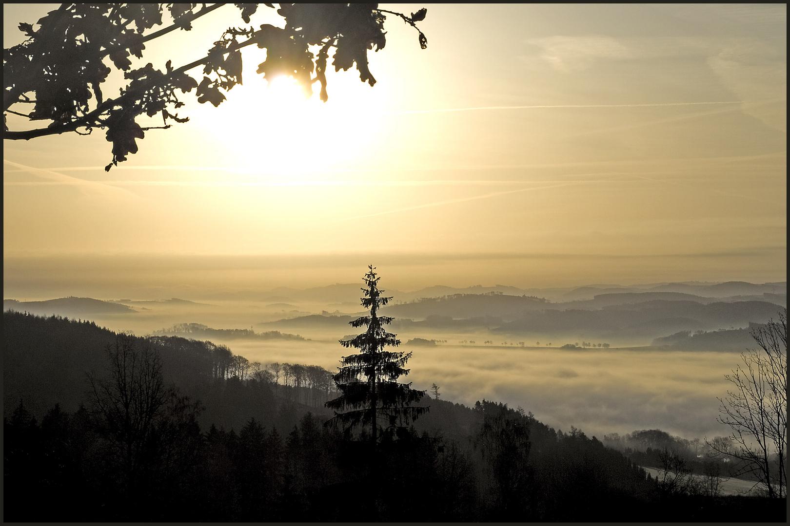 Morgens auf dem Kohlberg