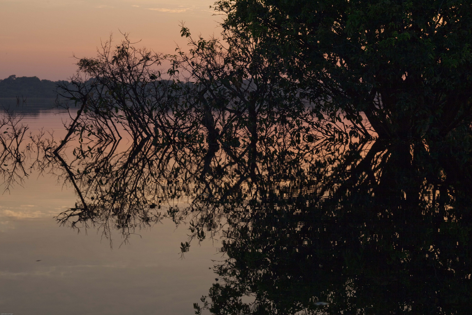 Morgens auf dem Rio Negro II