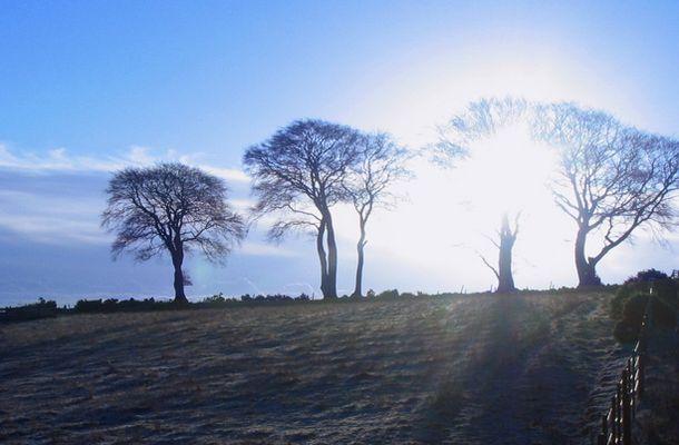 Morgens halb zehn in Schottland