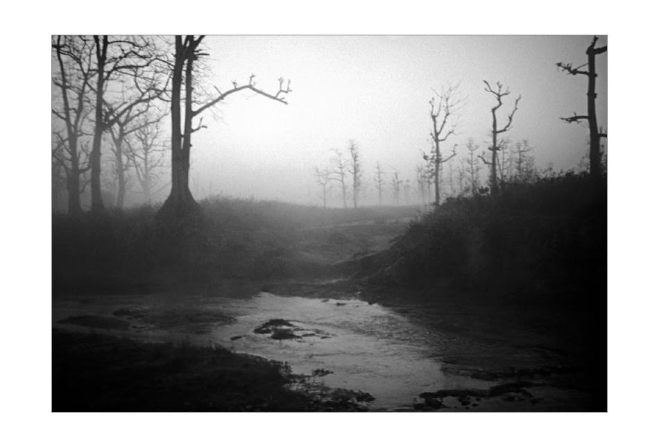 Morgens im Chitwan National Park