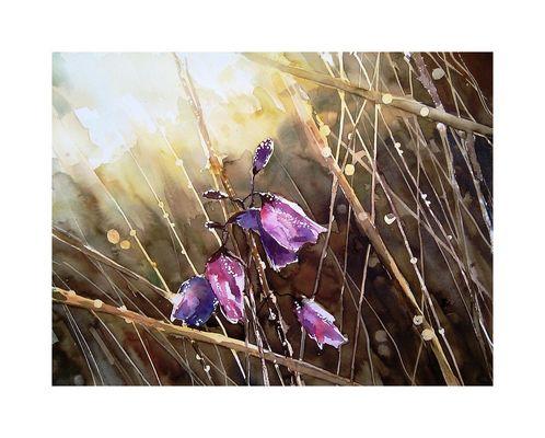 Morgens im Korn