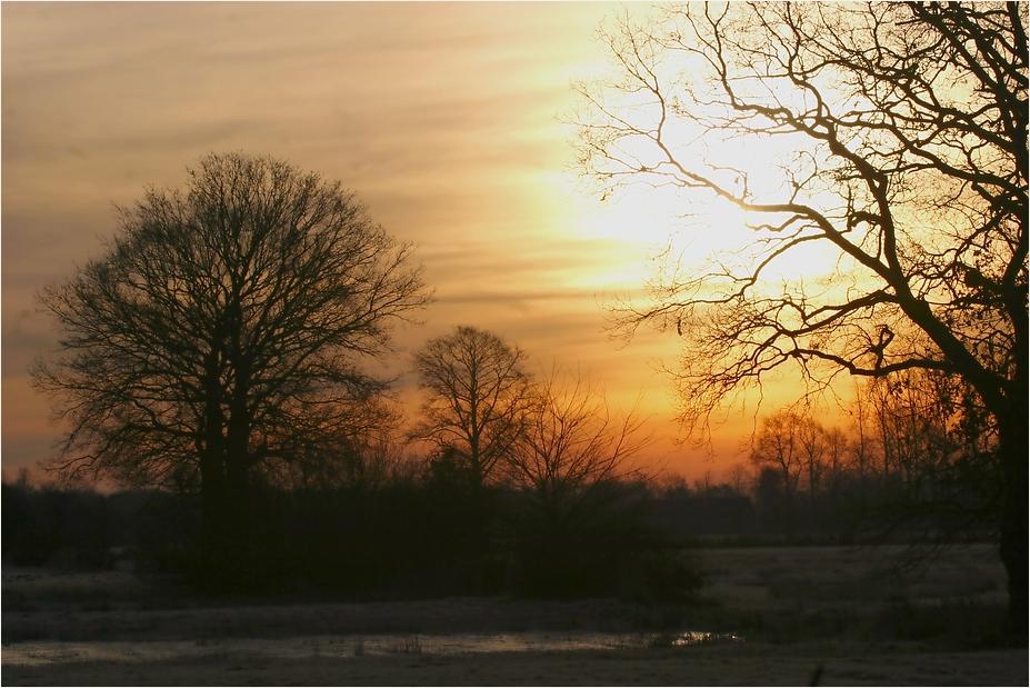 Morgens im Münsterland