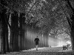 morgens im Park.......