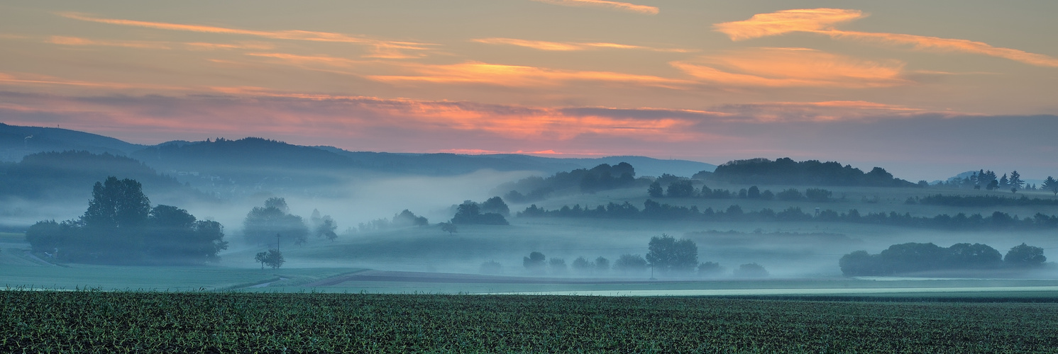 *morgens im Wittlicher Tal*