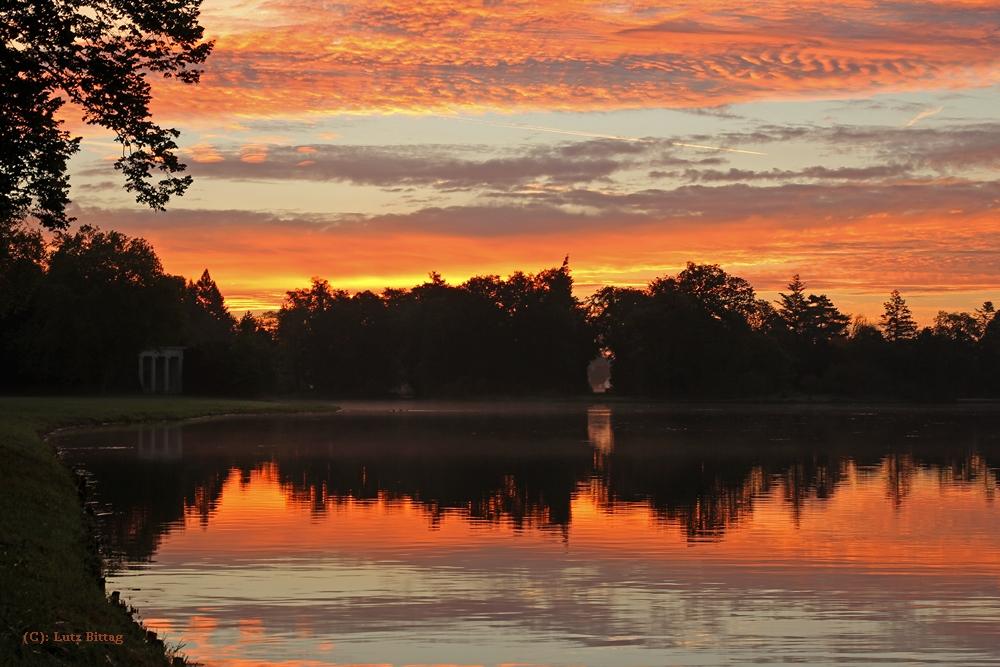 Morgens im Wörlitzer Park