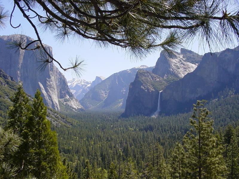 Morgens im Yosemite..........
