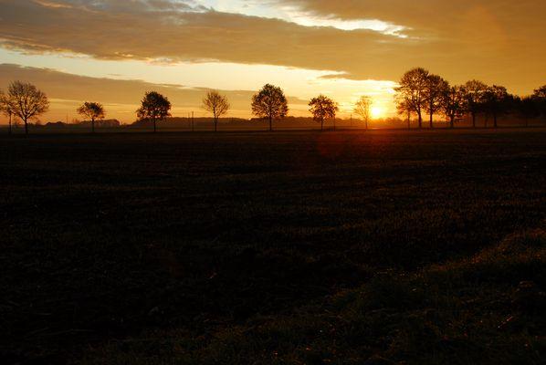 Morgens in Ascheberg