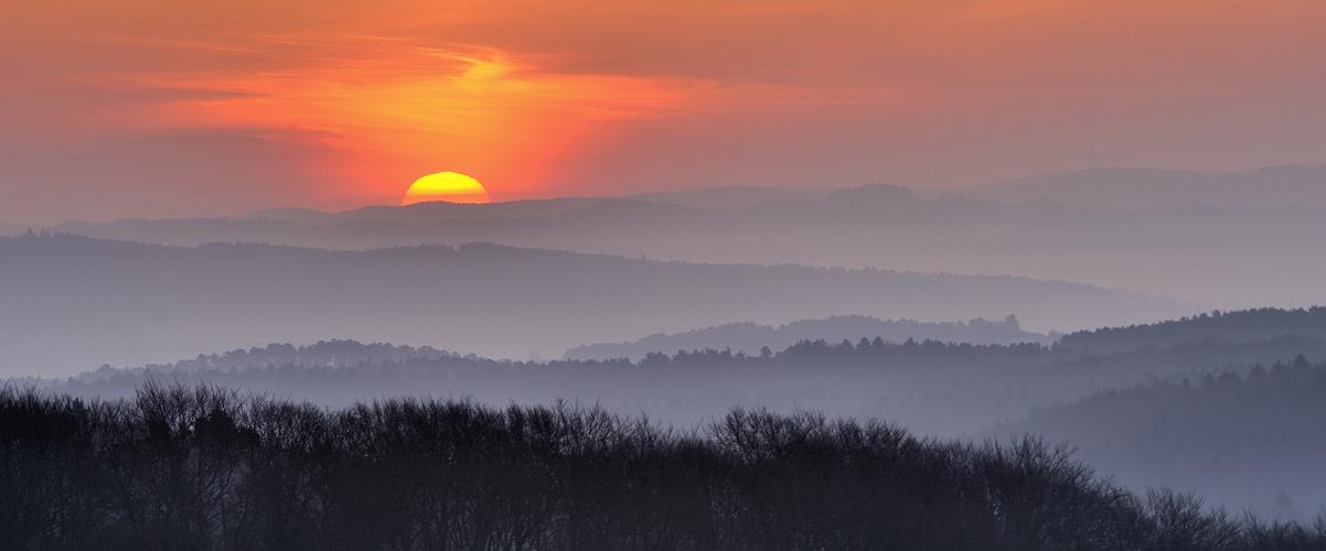 *morgens in der Eifel VII*