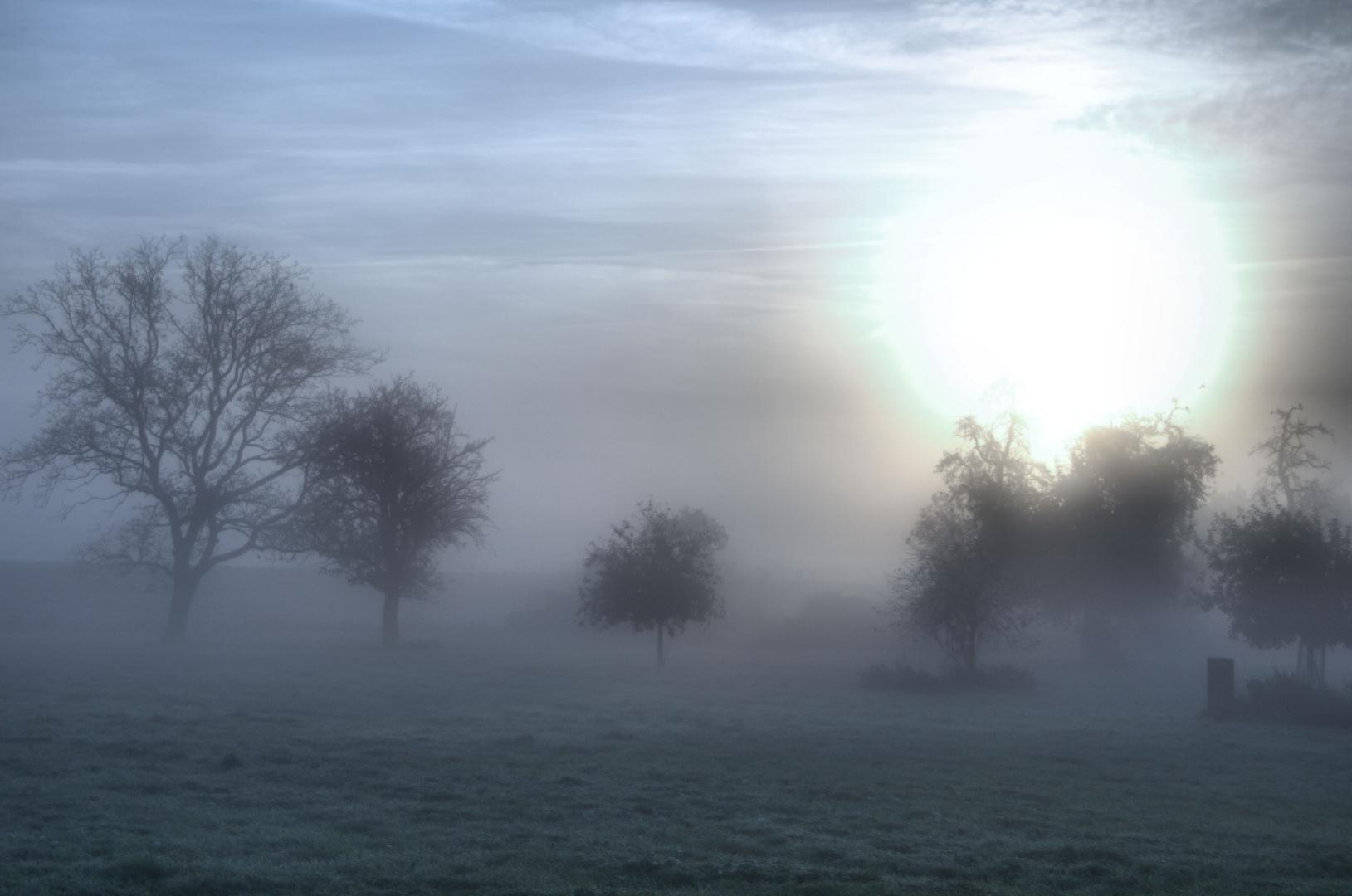 Morgens in Emmerich am Niederrhein
