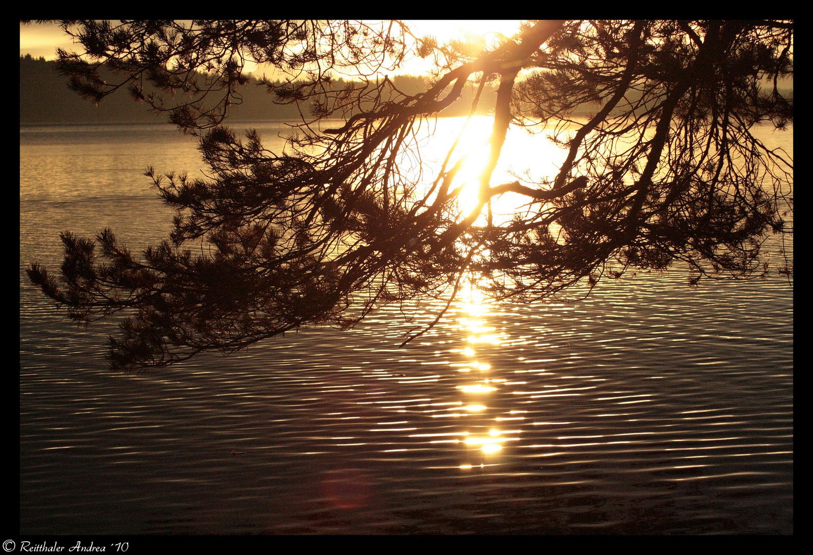 morgens um 6 - am Waginger See