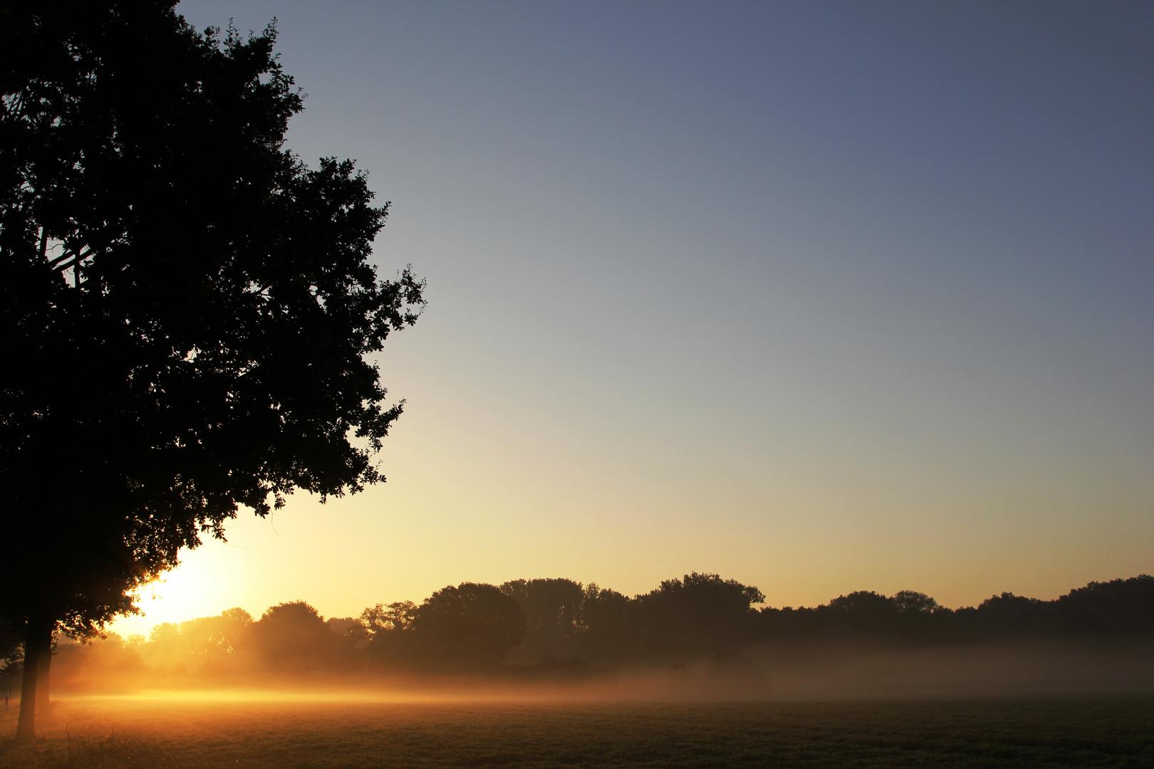 Morgens um 7...