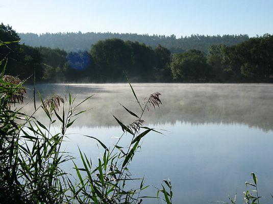 Morgens um 9 am See