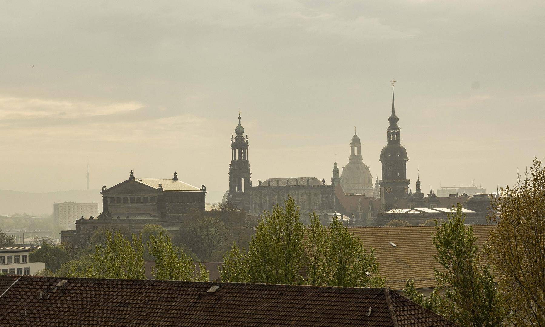 Morgens um halb zehn in Dresden