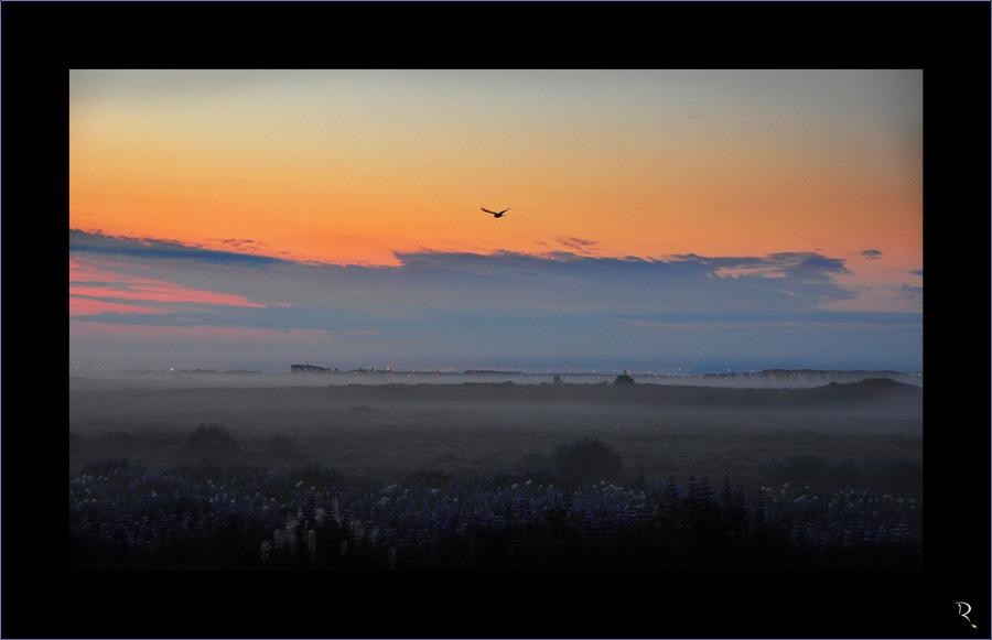 Morgens um zwei in Island