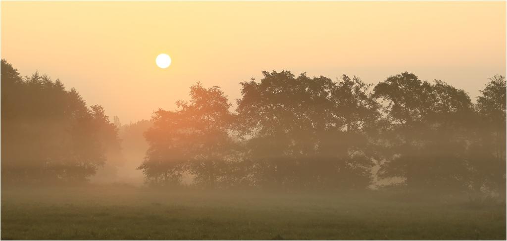Morgensonne im Nebel