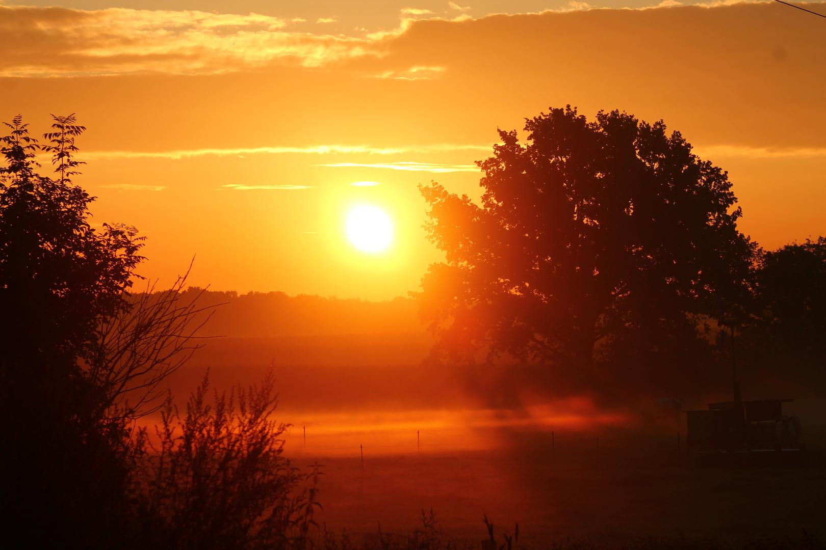 Morgensonne mit Nebel