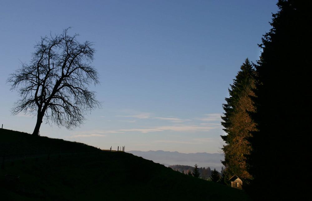 MorgenSonne Stierenberg Rickenbach