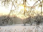 Morgensonne X