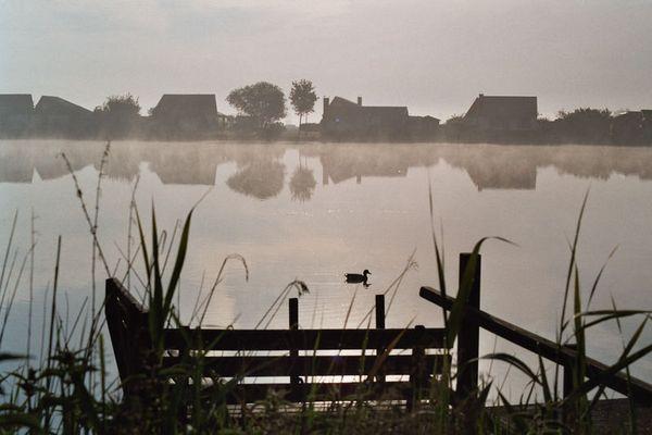 Morgenstille am See