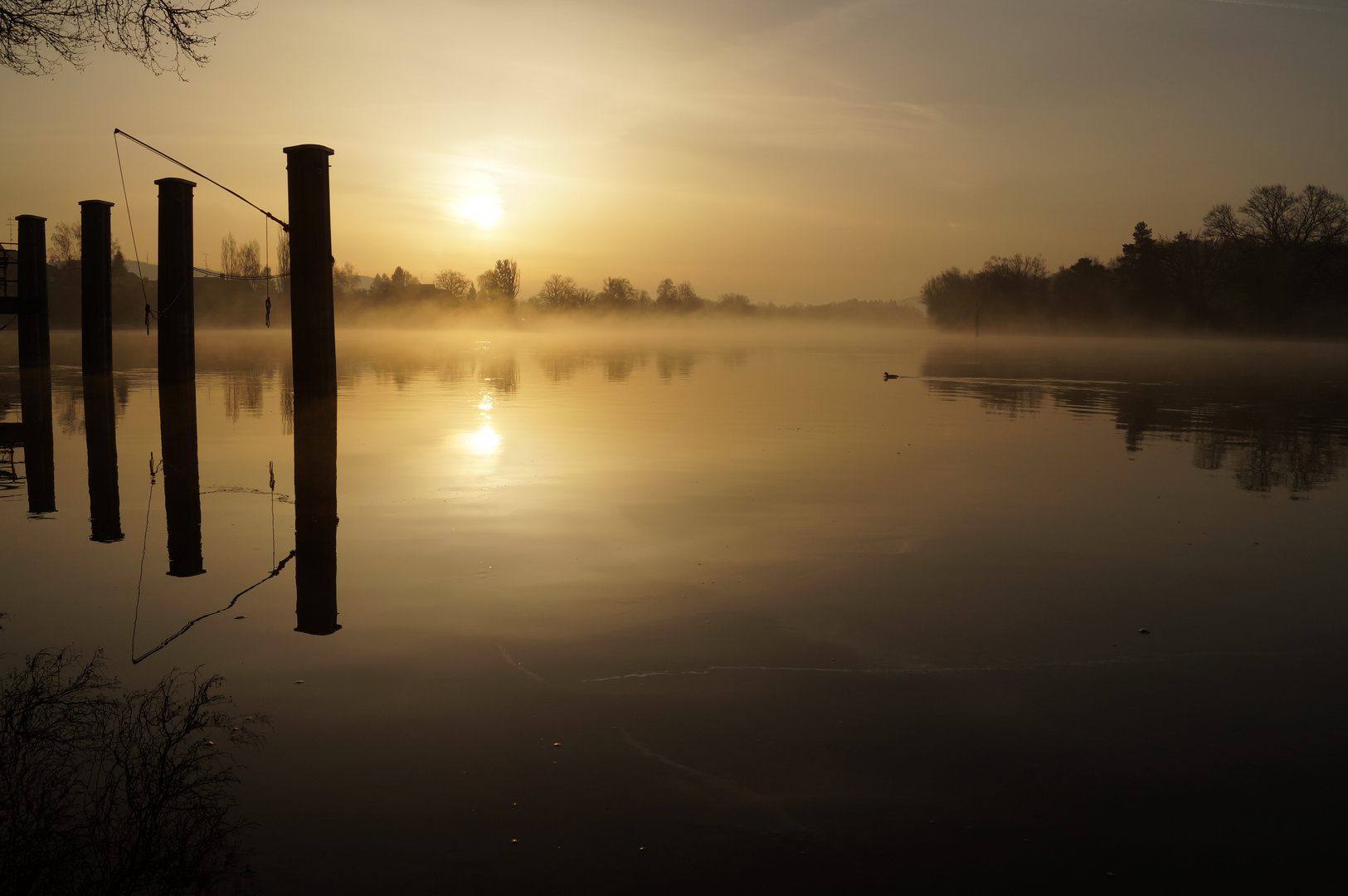 Morgenstimmung am Hochrhein bei Büsingen