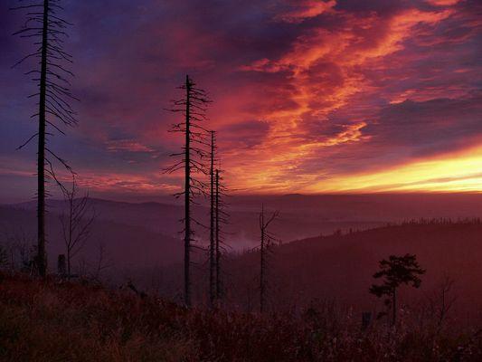 Morgenstimmung am Lusengipfel, Nationalpark Bayerischer Wald