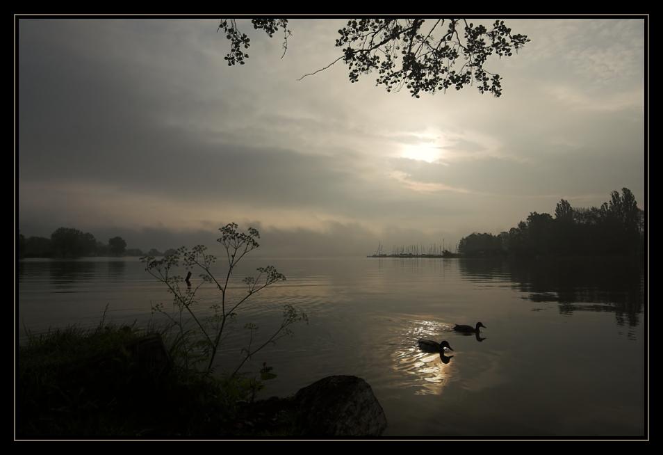 Morgenstimmung am Schweriner See