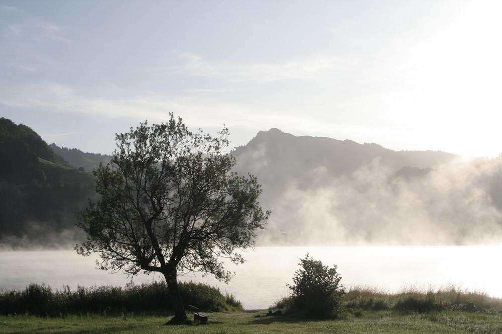 Morgenstimmung am Sihlsee