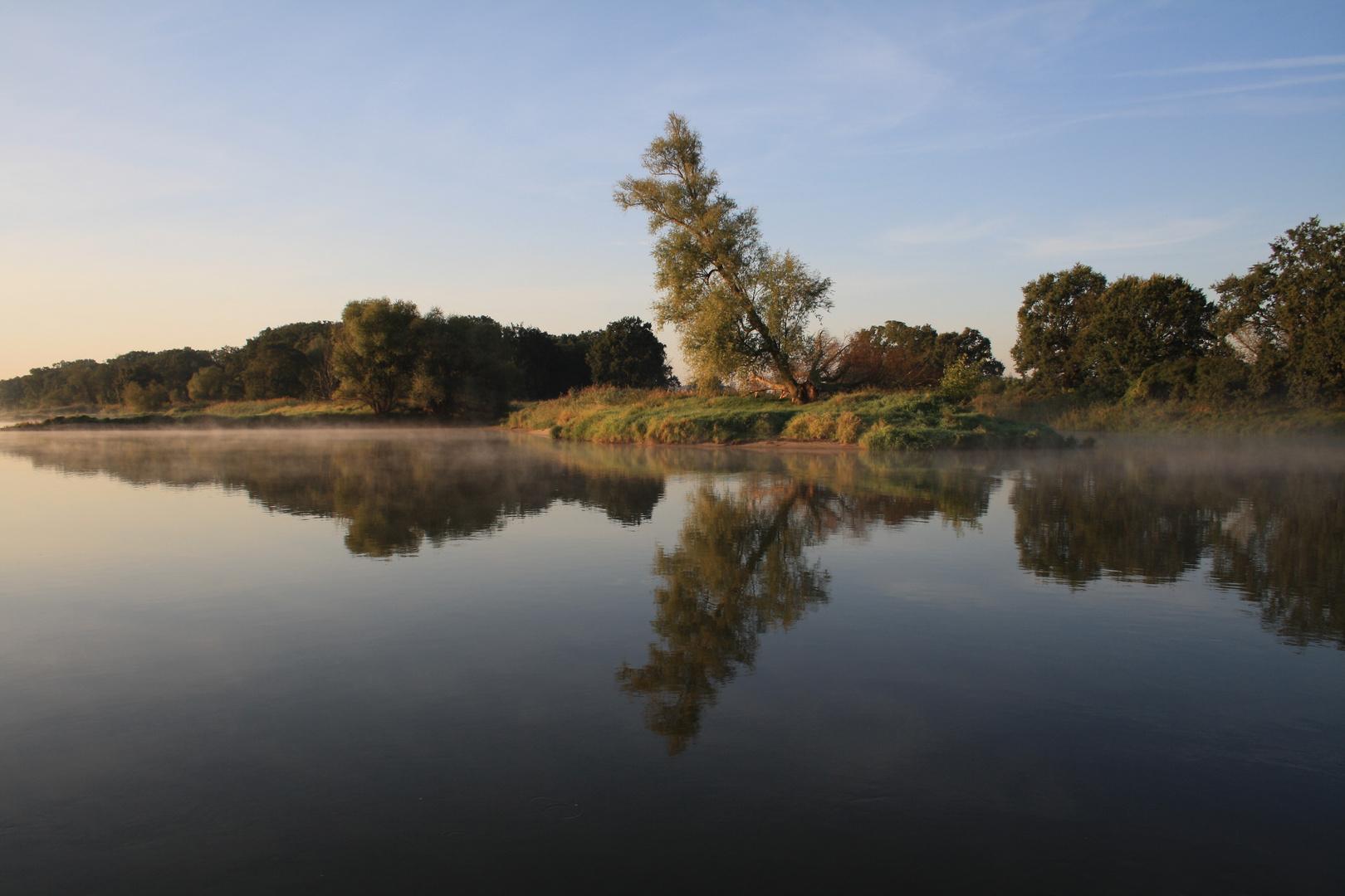 Morgenstimmung an der Oder