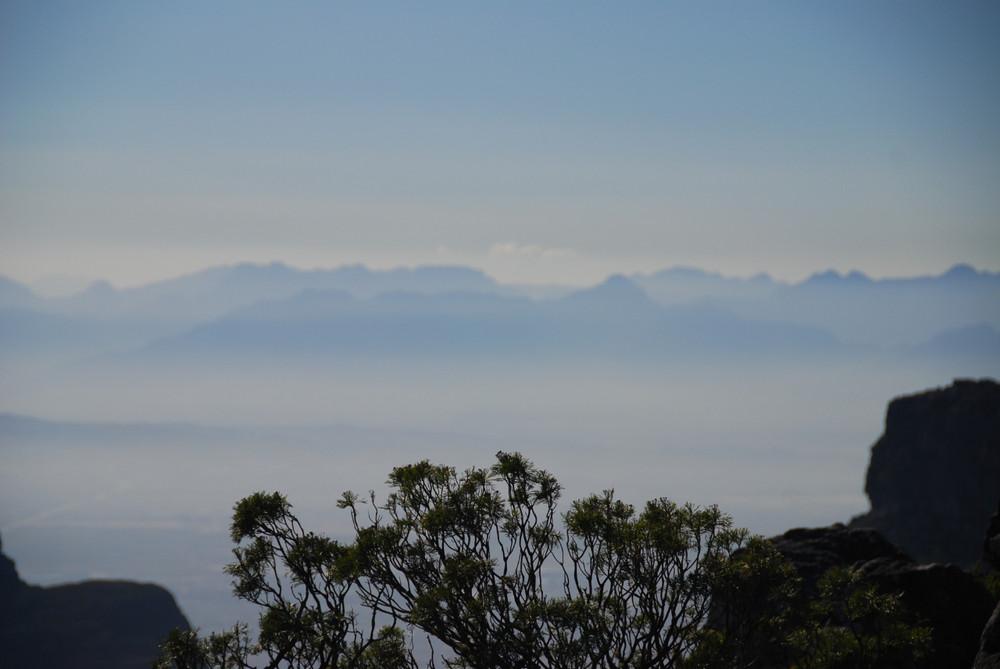 Morgenstimmung auf dem Tafelberg