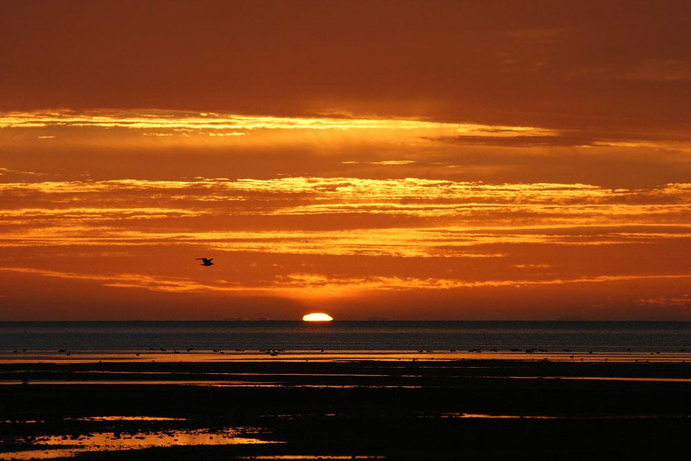 Morgenstimmung bei Cape Farewell