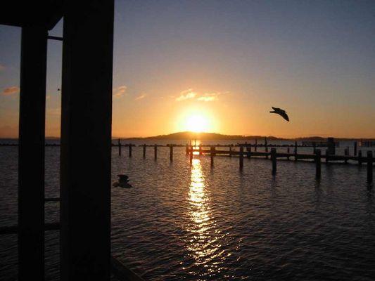 Morgenstimmung im Floating Home