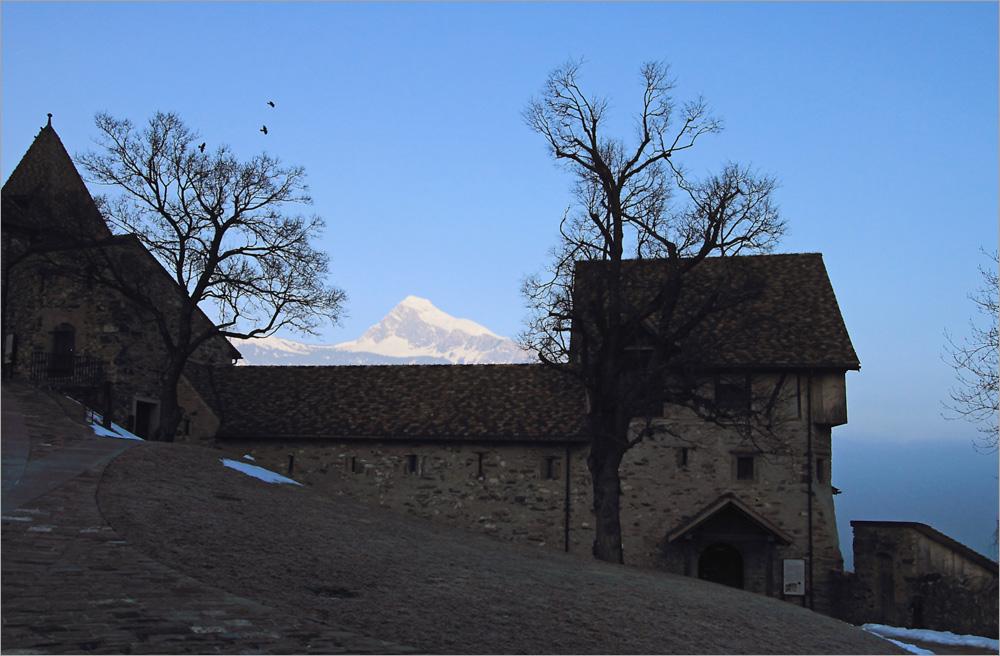 Morgenstimmung im Hof der Burg Gutenberg