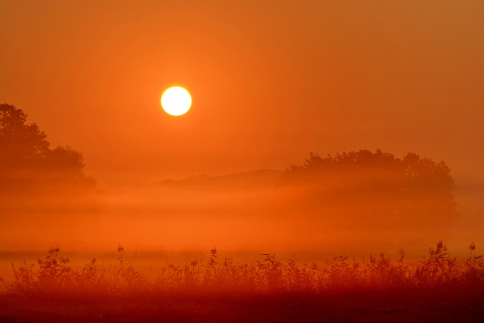 Morgenstimmung im Rhön-Grabfeld
