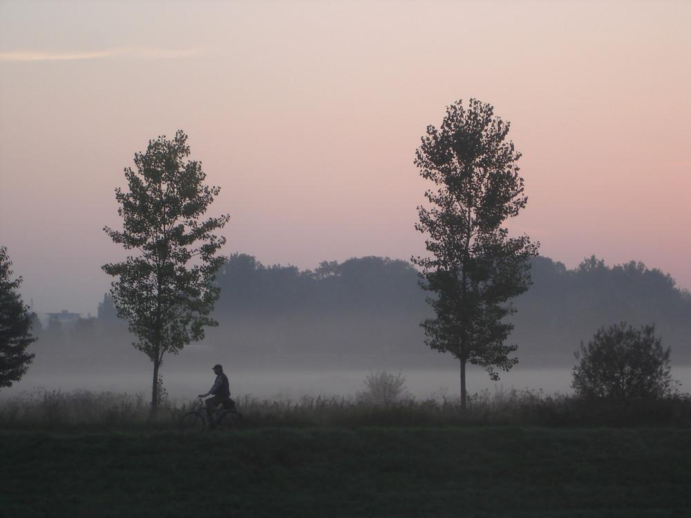 Morgenstimmung im Spätsommer