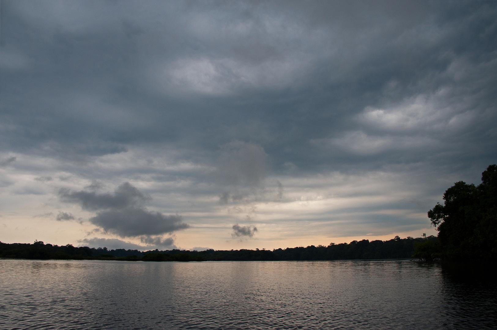 Morgenstimmung in Amazonien