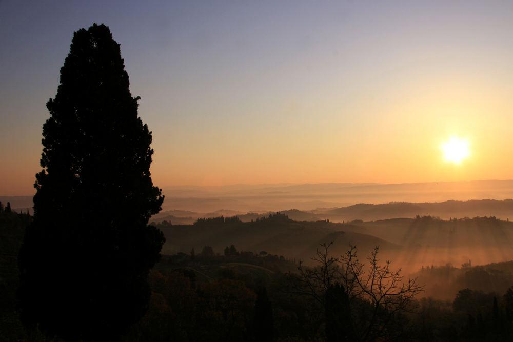 Morgenstimmung Toscana 2