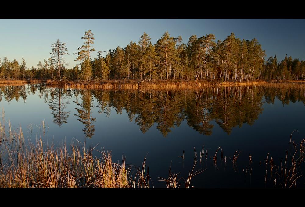 Morgenstimmung_Lappland